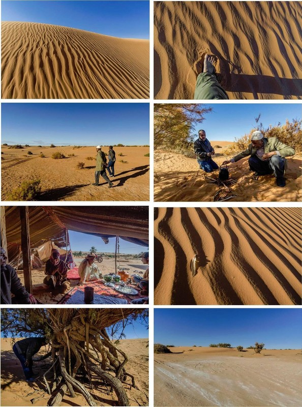 Les rides du désert