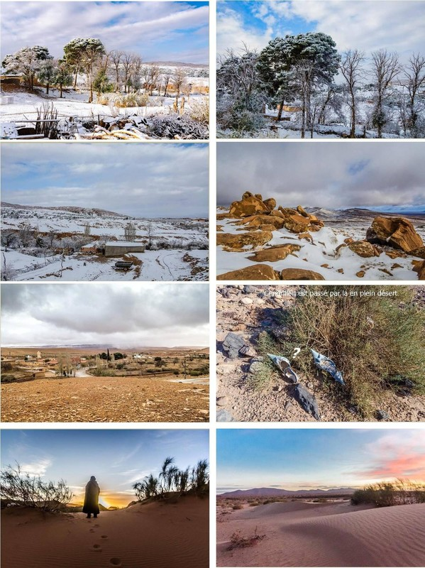 La neige autour d'El Bayadh